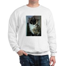 Calico Cat Sweatshirt