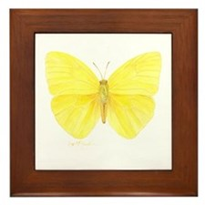 yellow butterfly Framed Tile