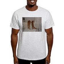 Orange Tabby Kitten Cuties T-Shirt