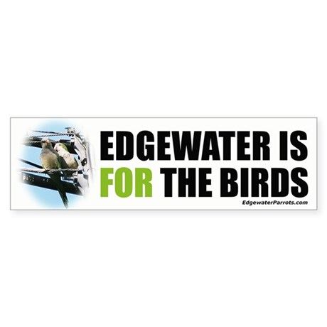 Edgewater is FOR the birds bumper sticker