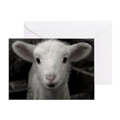 White Lamb Greeting Card