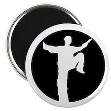 Taijiquan Logo Magnet