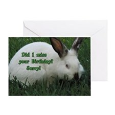 Belated Birthday Bunny Greeting Card