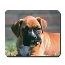 Boxer Pup with Stick Mousepad