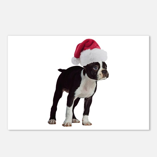 Boston Terrier Christmas Postcards (Package of 8)