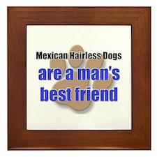 Mexican Hairless Dogs man's best friend Framed Til