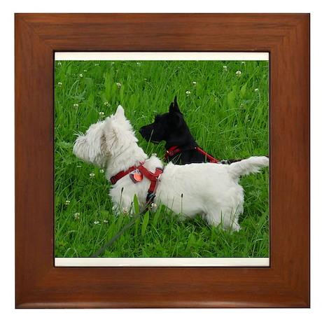 Westie and Scottie Framed Tile