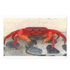 Mexican Land Crab Postcards (Package of 8)