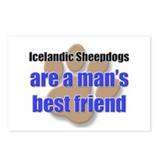 Icelandic Sheepdogs man's best friend Postcards (P