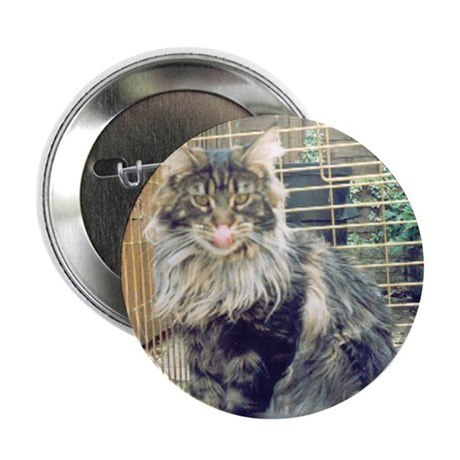 'WildThing' Tobias_MaineCoon Button