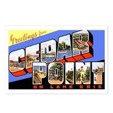 Cedar Point Ohio Greetings Postcards (Package of 8