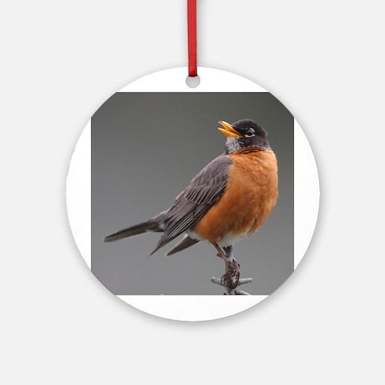 Red Robin Ornament (Round)