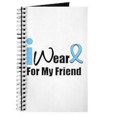 Prostate Cancer Journal