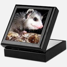 opossum Keepsake Box