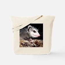 Opossum Baby Tote Bag