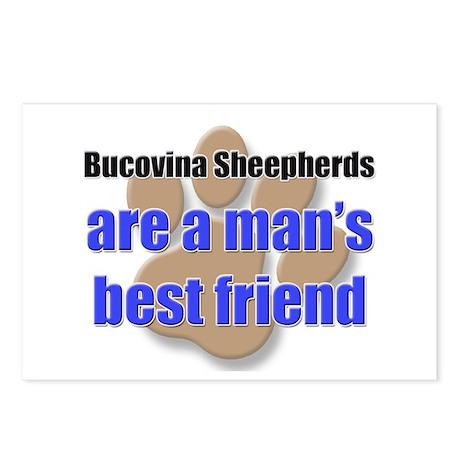Bucovina Sheepherds man's best friend Postcards (P
