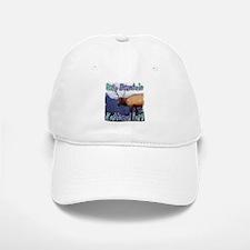 Rocky Mountain National Park Baseball Baseball Cap