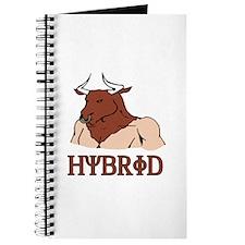 Hybrid Journal