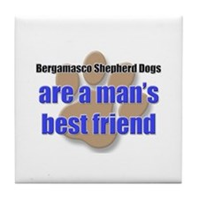 Bergamasco Shepherd Dogs man's best friend Tile Co