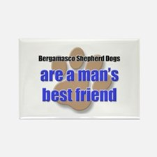 Bergamasco Shepherd Dogs man's best friend Rectang