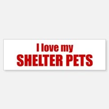 I love my shelter pets.
