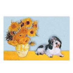 Sunflowers/PBGV Postcards (Package of 8)