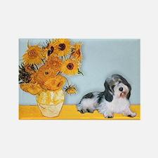 Sunflowers/PBGV Rectangle Magnet