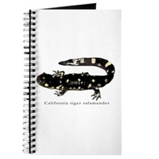 Tiger salamander 1 Journal