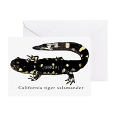 Tiger salamander 1 Greeting Card