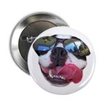 BOSTON TERRIER YO DAWG SUNGLASSES Button