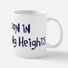 Born in Sterling Heights Mug