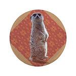 Meerkat 3.5