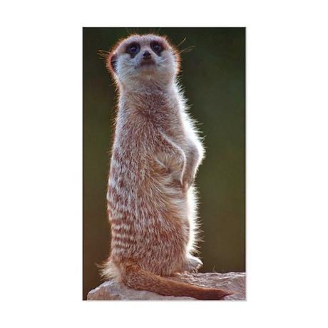 Meerkat Rectangle Sticker