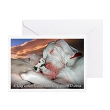 Sleep without Dreams Greeting Cards (Pk of 10)
