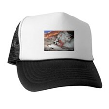 Sleep without Dreams Trucker Hat