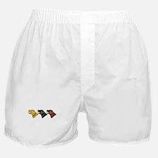 Retrivers Boxer Shorts