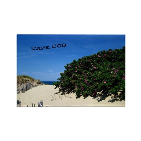 Race point beach Rectangle Magnet (10 pack)