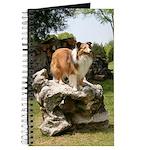 Shetland Sheepdog Fiona Journal