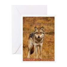 Autumn Sentinel Greeting Card