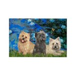 Lilies3/3 Cairn Terriers Rectangle Magnet (10 pack