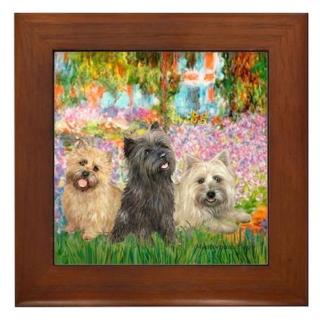 Garden/3 Cairn Terriers Framed Tile