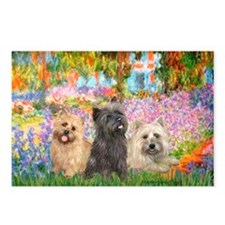Garden/3 Cairn Terriers Postcards (Package of 8)