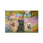 Garden/3 Cairn Terriers Rectangle Magnet (10 pack)