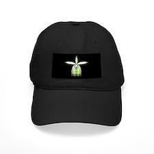 Orchid Epi Baseball Hat