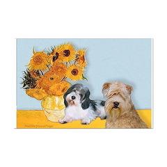 Sunflowers/PBGV8+Wheaten8 Posters