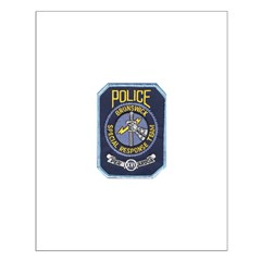 Brunswick Police SWAT Posters