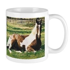 Paint Gelding for Horse Lovers,small Mug