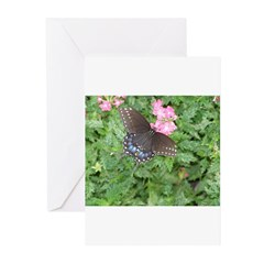 Butterfly No. 2 Greeting Cards (Pk of 10)