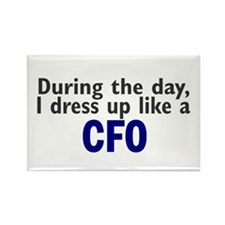 Dress Up Like A CFO Rectangle Magnet (10 pack)
