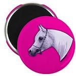 Arabian Horse Heart Magnet